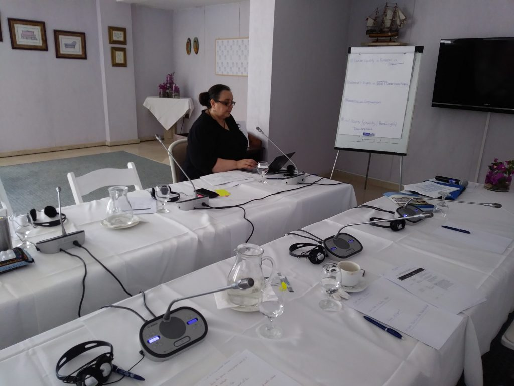 Sussan Tahmasebi - trainer in the Cyprus workshop