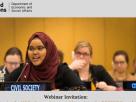 NGOs in consultative status